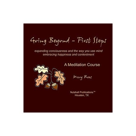 Going Beyond - First Steps CD-ROM